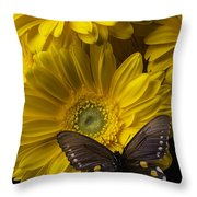 Brown Butterfly On Yellow Daisies  Throw Pillow