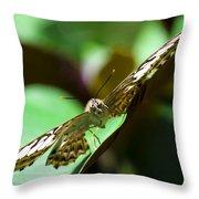 Brown Clipper Landing Throw Pillow