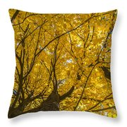 Brown County Colors Throw Pillow
