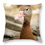 Brown Duck Portrait Throw Pillow