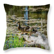 Brown Ducks On Log Throw Pillow