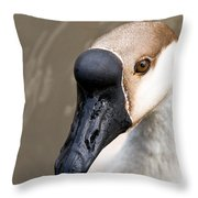 Brown Eye Throw Pillow