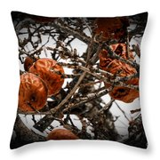 Brown Fruit Abstract Throw Pillow