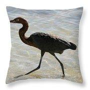 Brown Heron Throw Pillow