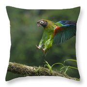 Brown-hooded Parrot Throw Pillow