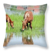 Brown Horse And Foal Nature Spring Scene Throw Pillow