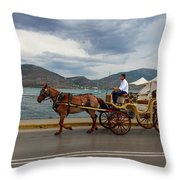 Brown Horse Drawn Carriage Throw Pillow
