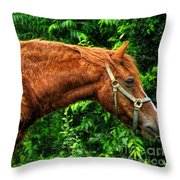 Brown Horse In High Definition Throw Pillow