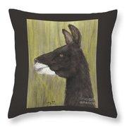 Brown Llama Profile Cathy Peek Farm Animal Art Throw Pillow