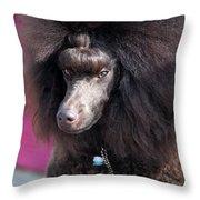 Brown Medium Poodle Throw Pillow