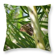 Brown Morpho Butterfly Resting On A Sunny Tree  Throw Pillow