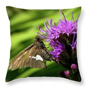 Brown Moth On Pink Throw Pillow