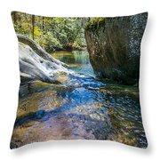 Brown Mountain Forest Throw Pillow