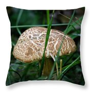 Brown Mushroom Squared Throw Pillow