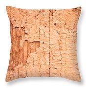 Brown Paint Texture Throw Pillow