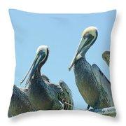 Brown Pelican 4 Throw Pillow