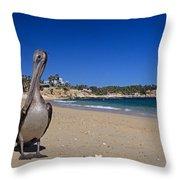 Brown Pelican At The Baja Throw Pillow
