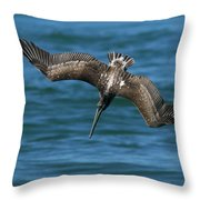 Brown Pelican Fishing Throw Pillow