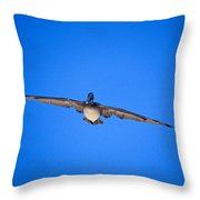 Brown Pelican Flying Throw Pillow