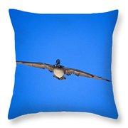 Brown Pelican Flying Throw Pillow