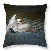 Brown Pelican In Flight Throw Pillow
