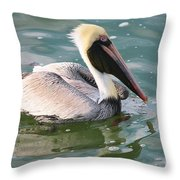 Brown Pelican In The Bay Throw Pillow