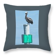 Brown Pelican On Marker 7 Throw Pillow