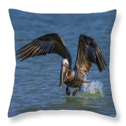 Brown Pelican Taking Off Throw Pillow