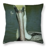 Brown Pelican Up Close Throw Pillow