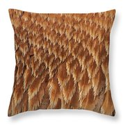 Brown Pelican Wings Throw Pillow