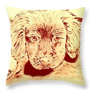 Brown Puppy Throw Pillow