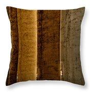 Brown Silos Throw Pillow