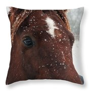 Brown Snow Horse Throw Pillow