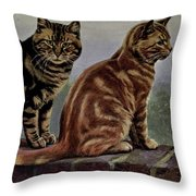 Brown Tabby And Orange Tabby Throw Pillow