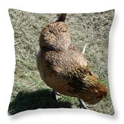 Brownie The Hen Throw Pillow