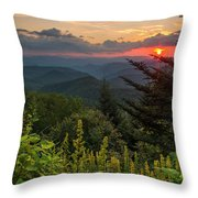 Brp. Throw Pillow
