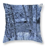 Brrrrr Throw Pillow
