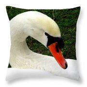 Bruges Swan 2 Throw Pillow