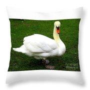 Bruges Swan 3 Throw Pillow