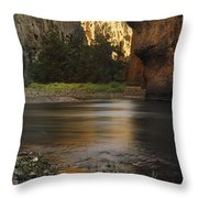 Bruneau Canyon Throw Pillow