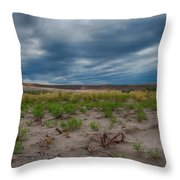 Bruneau Dunes Throw Pillow
