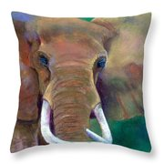Bruno Throw Pillow