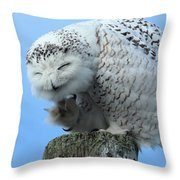 Brunswick Coffee Mug Throw Pillow