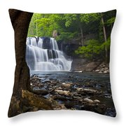 Brush Creek Falls II Throw Pillow