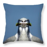 Brush Cut  Throw Pillow