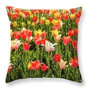 Brushed Tulips Throw Pillow