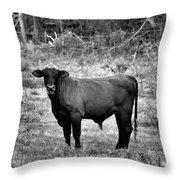 Brutus2 Throw Pillow