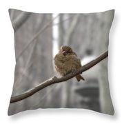 Bryant Park Bird Nyc Throw Pillow