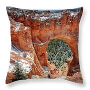 Bryce Arch Throw Pillow