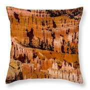 Bryce Canyon Series #4 Throw Pillow